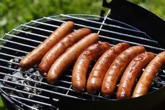 Barbecue Immagine Stock Libera da Diritti