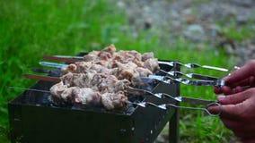 barbecue vídeos de arquivo