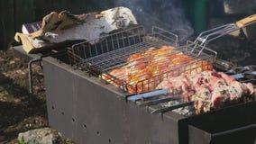 Barbecue banque de vidéos