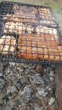 barbecue imagens de stock