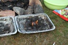 Barbecue in aard Royalty-vrije Stock Afbeeldingen