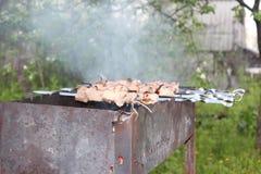 Barbecue all'aperto Immagine Stock