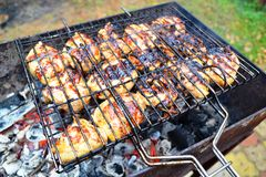 Food photography Barbecue so appetizing pieces of meat Stock Image
