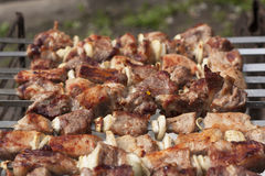 Barbecue avec de la viande grillée délicieuse sur le gril Image stock