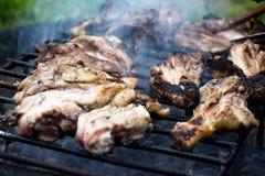 Barbecue avec des jambes de poulet et des cuisses photo stock