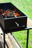 Barbecue avec le bois de chauffage Photographie stock