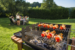 Barbecue in the backyard royalty free stock photos