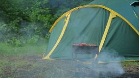 Barbecue with a barbeque on the ground is in the forest against the background of a green tent, General plan. stock footage