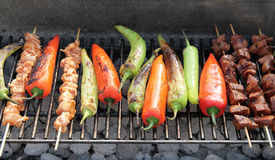 Barbecue, BBQ - chiche-kebab sur le gril chaud Photographie stock