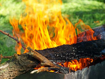 Barbecue bonfire. Royalty Free Stock Photos