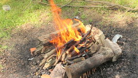 Barbecue bonfire stock video footage