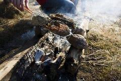 Barbecue bruciato-fuori del pesce fuori del picnic, concetto della gente di stile di vita Fotografia Stock Libera da Diritti