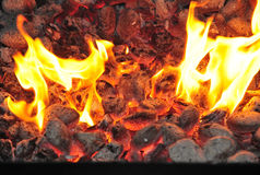 Barbecue burning charcoal Stock Images