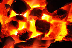 Barbecue charcoal fire Stock Images