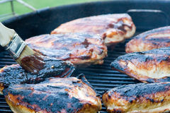 Barbecue Chicken. Grilled Chicken and barbecue sauce Stock Photography
