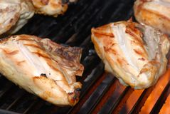 Barbecue  chicken on a grill Royalty Free Stock Photo