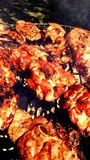 Barbecue chicken and lamb Royalty Free Stock Images