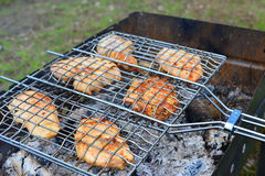 Barbecue chicken over an open fire in  summer Royalty Free Stock Photo