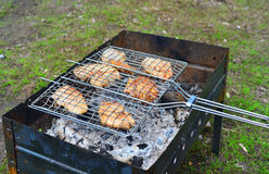 Barbecue chicken over an open fire in  summer Royalty Free Stock Image
