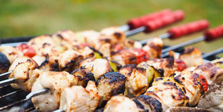 Barbecue with chicken  and vegetables on spear Stock Images