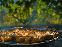 Barbecue close-up over leaves royalty free stock photo