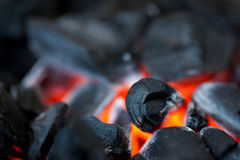 Barbecue coal Stock Images