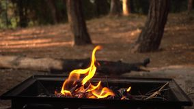 Barbecue Coal Fire stock video footage