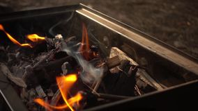 Barbecue Coal Fire stock video