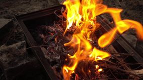 Barbecue Coal Fire stock footage