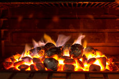 Barbecue Cooking Royalty Free Stock Photo