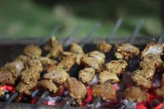 Barbecue délicieux de poulet photographie stock libre de droits