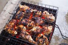 Barbecue da carne di pollo Fotografie Stock