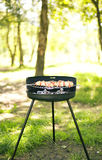 Barbecue dans le jardin Photos stock