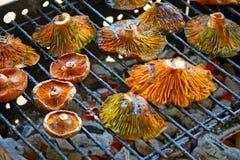 Barbecue de champignon Photographie stock