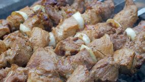 Barbecue de chiche-kebab sur le gril banque de vidéos