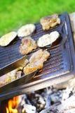 Barbecue de jardin Images stock