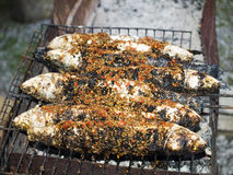 Barbecue de poissons Photos stock