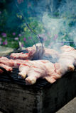 Barbecue de poulet Photographie stock libre de droits