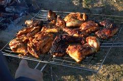 Barbecue de poulet Images stock