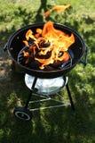 Barbecue del cortile Fotografia Stock Libera da Diritti