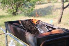 Barbecue del fuoco immagine stock libera da diritti