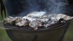 Barbecue del pesce e della carne archivi video