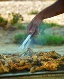 Barbecue del pollo Immagine Stock Libera da Diritti