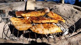Barbecue del pollo sul forno concreto riscaldato carbone in un bello giorno soleggiato accanto ad un lago in 4K stock footage