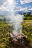 Barbecue with delicious grilled meat Royalty Free Stock Photos