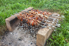 Barbecue with delicious grilled meat Stock Photography