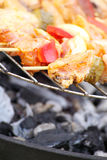 Barbecue with delicious grilled meat on grill Stock Image