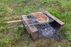 Barbecue with delicious grilled meat Royalty Free Stock Photography