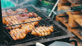 Barbecue With Delicious Grilled Meat On Grill. Barbecue Party. Chicken meat pieces being fried on charcoal grill stock video