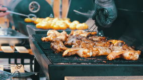 Barbecue With Delicious Grilled Meat On Grill. Barbecue Party. Chicken meat pieces being fried on charcoal grill stock footage